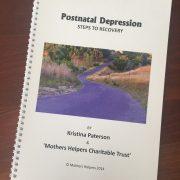 10 Week PND Recovery Workbook